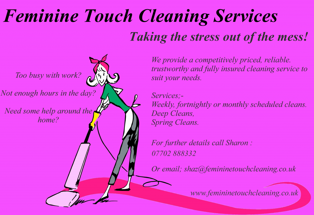 domestic cleaning companies